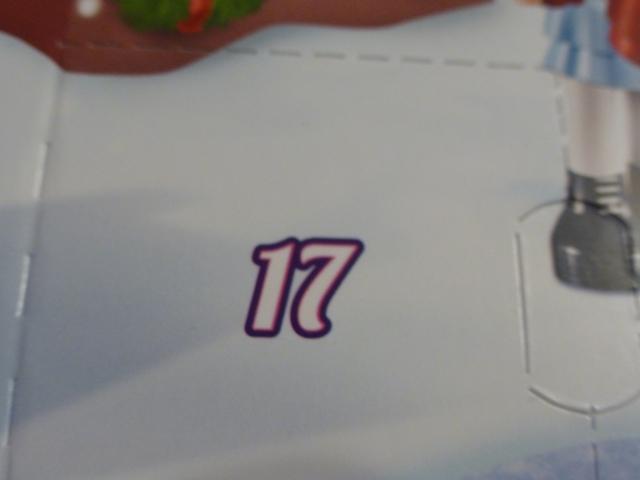 P1110213 (Copier)
